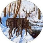 Winter Bliss Spare Tire Cover