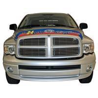 0304 Chevy EGR Hood Bug Shield #24 Jeff Gordon 301920